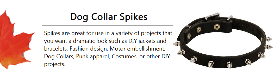Dog Collar Spike Banner