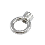 Polyfab™ Pro 316 Stainless Steel Eye Nut