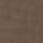 Spectropile Carpet - Beige