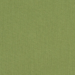 Sunbrella Outdoor Furniture Fabric - Spectrum Cilantro 48022-0000